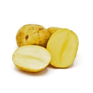 Kartoffeln Sorte Belana festkochend