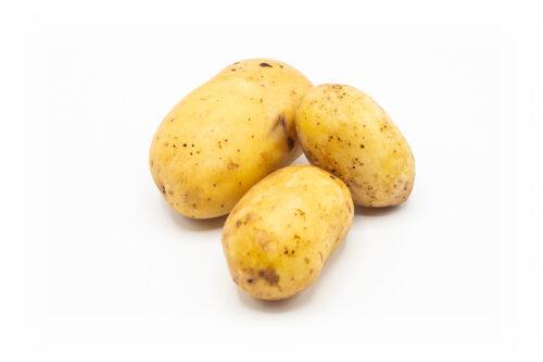 Kartoffeln Sorte Queen Anne vorwiegend-festkochend