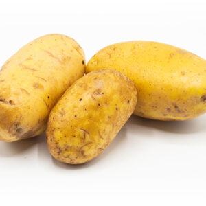 Kartoffel Sorte Talent mehligkochend