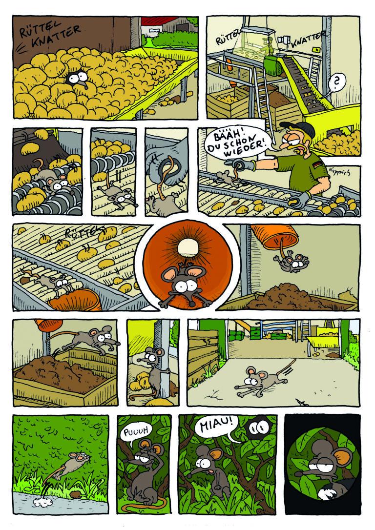 Der Hof-Comic