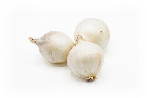 Zwiebeln weiß
